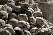 pic of catacombs  - Skulls in Fontanel cemetery Sanit� quarter Naples