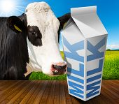 foto of white-milk  - White packaging of fresh milk with text Milk in a countryside landscape with green grass and a close up of a black and white curious cow - JPG
