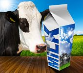 image of white-milk  - White packaging of fresh milk with text Milk in a countryside landscape with green grass and a close up of a black and white curious cow - JPG