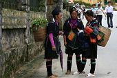 H'mong Hill People in Sapa