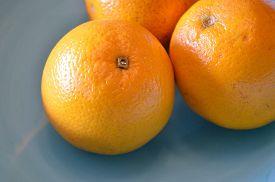 picture of valencia-orange  - Closeup of 3 valencia oranges in a sky blue bowl - JPG