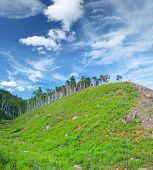 Riesige Hügel mit grünem Gras und Bäumen an der Spitze