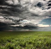 Storm clouds with rain over meadow with green grass