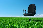 Office chair standing on green meadow