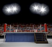 pic of wrestling  - A 3d generated professional boxing ring empty showiing audence in back - JPG