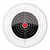 vector target