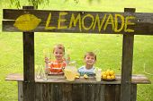 Two boys with lemonade stand