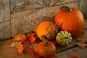 Pumpkins and gourds at the door ready for halloween