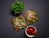 Avocado Toast. Sandwich With Brown Bread. Healthy Sandwich. Healthy Food. Healthy Toast. Vegan Sandw poster