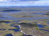 Tundra Of Siberia.
