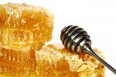 dipper mel