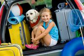 picture of dog clothes  - Travel - JPG