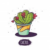 Set Of Cactus. Hand Drawn Succulent Ornament. Color Illustration. A Set Of Cacti - Line Drawing. Vec poster