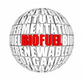 biofuel around us