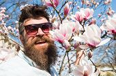Man With Beard And Mustache Wears Sunglasses On Sunny Day, Magnolia Flowers On Background. Springtim poster