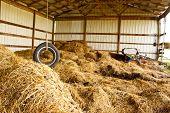 Tire Swing Farm