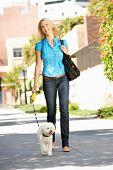 Mujer caminando con el perro en la calle de la ciudad