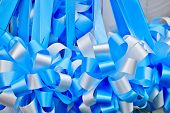 Blue and white bows
