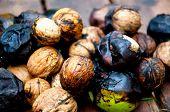 Fresh Walnuts