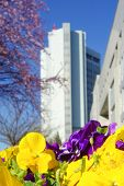 Ankara, Turkey - The Ministry of Foreign Affairs building in springtime  poster