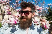 Guy Looks Cool With Stylish Sunglasses. Springtime Concept. Man With Beard And Mustache Wears Sungla poster