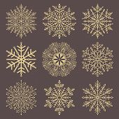 Set Of Golden Snowflakes. Fine Winter Ornament. Snowflakes Collection. Snowflakes For Backgrounds An poster
