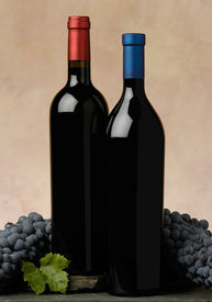image of wine grapes  - two red wine bottles - JPG