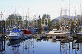 Marina At Uclelet Harbor On The West Coast