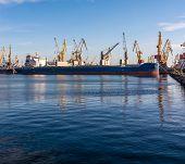 Bulk Carrier Ship In The Port On Loading. Bulk Cargo Ship Under Port Crane Bridge. Ship In Seaport A poster