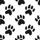 Seamless Pattern With Animal Paw Prints. Dog Or Cat Hand Drawn Paw Print. poster