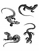 picture of lizard skin  - Fast lizards in black color and tribal style for tattoo design - JPG