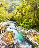 The Chasm (Fiordland, South Island, New Zealand)