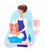 Woman Pet Groomer In Apron Washing Cute Dog Cartoon. Canine Hair Salon, Styling And Grooming Shop. P poster