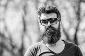 Mature Hipster With Beard. Bearded Man Outdoor. Beard Care And Barbershop. Male Fashion And Beauty.  poster