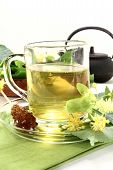 foto of lime-blossom  - a cup of lime blossom tea with fresh flowers - JPG