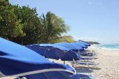 Bright Blue Beach Umbrellas and Caribbean Ocean at Shoal Beach and Anguilla