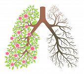 stock photo of exhale  - Lungs - JPG