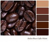 Italian Roast coffee bean colour palette with complimentary swatches. Part of a series of five images showing grades of roasted coffee.