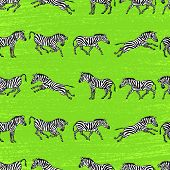 Background With Zebras.eps