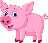 foto of baby pig  - Vector illustration of Cute baby pig cartoon - JPG