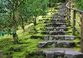 Asian Garden Stone staircase with wood railing and surrounding green grass and trees