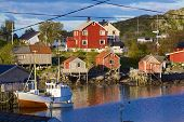 Fishing Town Of Reine