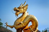 Golden Dragon Over Blue Sky