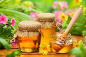 stock photo of honeycomb  - Honey in glass jars with flowers background - JPG