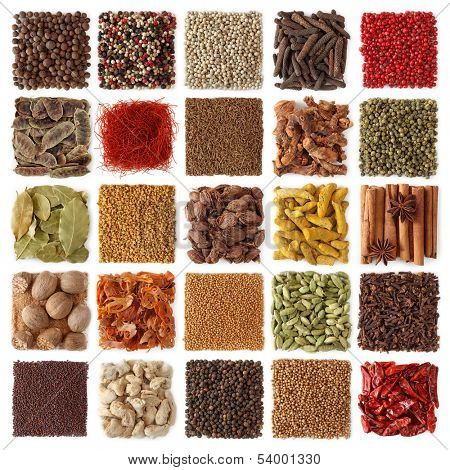 Indian spices collection isolated on