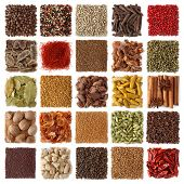 Indian spices collection isolated on white background