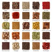 picture of cumin  - Indian spices collection with titles isolated on white background - JPG