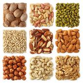 stock photo of pine nut  - Nuts collection isolated on white background - JPG