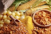 stock photo of maize  - Still life with maize products - JPG