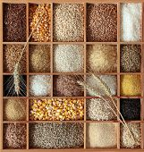 stock photo of millet  - Cereals in wooden box - JPG